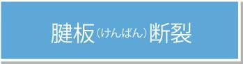 腱板(けんばん)断裂